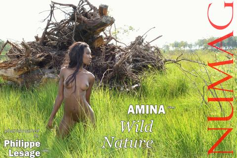 amina in wild nature by philippe lesage