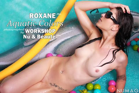 roxane in aquatic colors by workshop nu beaute